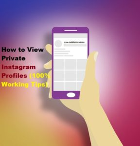 How to View Private Instagram Profiles (100% Working Tips)
